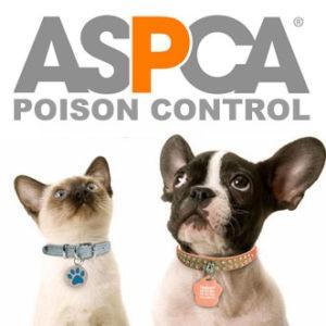 Link to ASPCA Poison Control Website